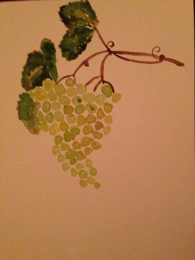 grapes-watercolor